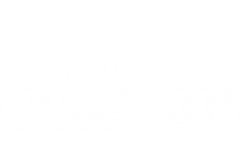 Ernie Ball Music Man